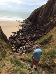 Explore the Pembrokeshire Coast National Park